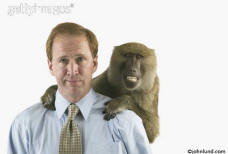photo of a businessman with a monkey on his back or maybe it's a baboon