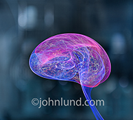 Artificial intelligence is portrayed in this image of light trails and colored lines taking on the shape of a human brain.