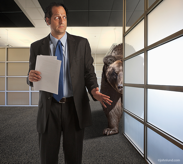 In this humorous photo depicting an immenent bear market, a surprised executive fearfully looks over his shoulder at a huge bear lurking behind him in a high end corporate office setting.