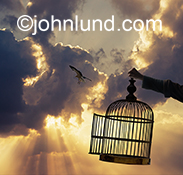 Freedom is illustrated in this image of a bird flying free from a cage held aloft by an unseen person against a dramatic cloudscape with God Rays.