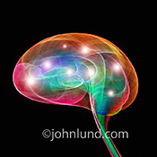 Artificial intelligence, creativity, ideas and innovation are shown in this stock photo of multi-colored light trails taking on the shape of a human brain and filled with points of light, all against a black background.