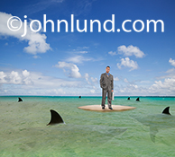 A businessman castaway on a tiny deserted island is surrounded by circling sharks in an image about business challenges, dangers and risk, and the ever increasing need for networks, connections and social media engagement.