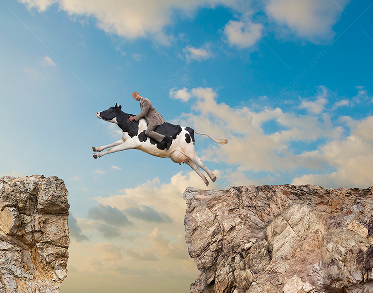 A businessman rides a funny cow leaping over a chasm in an image about sacred cows in business.