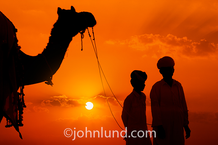 Two camel herders with a camel at sunset at the Pushkar Camel Fair in Rajasthan, India.