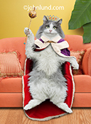 A long-haired cat sits on a couch wearing a purple and red fur-lined cape and a jeweled crown while hold a scepter...a queen for at least a day and a purrfect  image for a mother's day greeting card and stock photo.