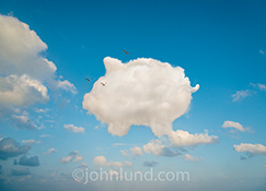 This online banking image features a cloud shaped like a piggy bank symbolizing electronic banking, investing in the cloud, and crowdfunding.