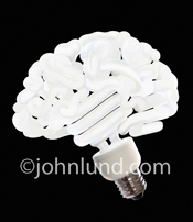 A twisty flourescent CFL replacement light bulb is shaped like a human brain illustrating Creativity, Thinking Green, and Energy Conservation