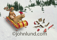 A Dachshund dog and an orange Tabby cat ride a sleigh down the snow covered hill in a funny pet picture.