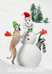 A cat and a dog build a snowman in this fun image created for a christmas greeting card and for stock photo licensing as well.