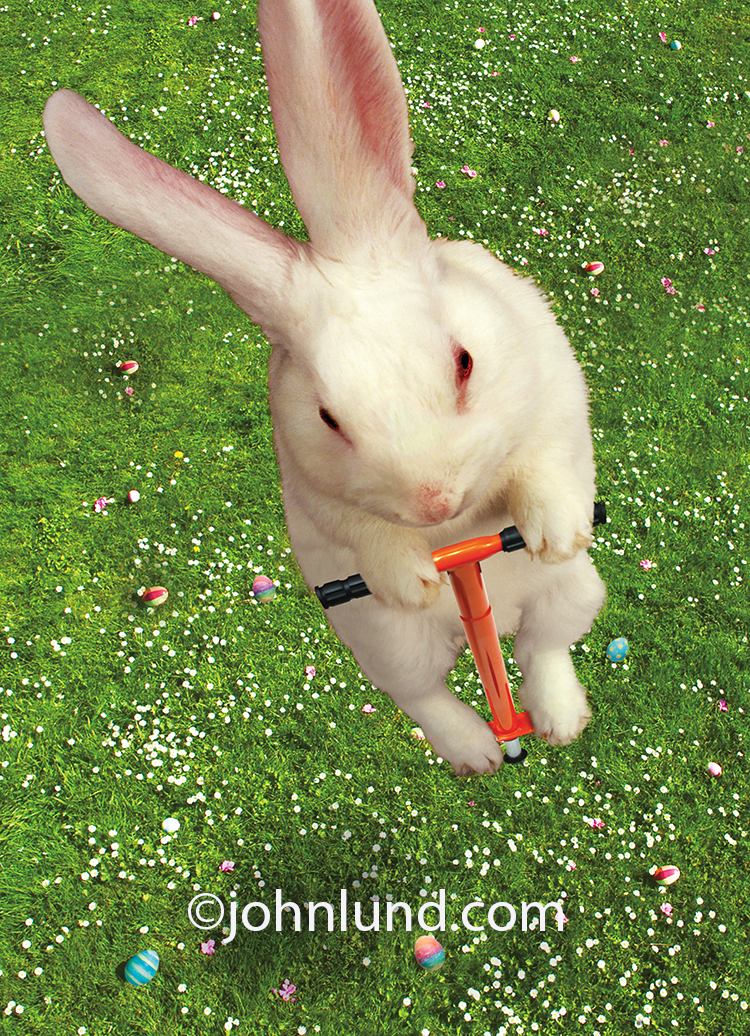An Easter Bunny rides a pogo stick in a funny Easter Greeting Card image.