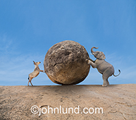An elephant and a donkey, representing republicans and democrats, push in opposite directions against a huge boulder in a humorous political image.