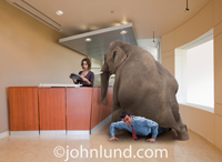 An elephant sits on a struggling businessman in a reception area as a woman casually ignores the pachyderm and reads her mail.