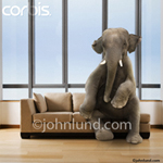 An elephant sits on a couch in this stock photo. Not only is the elephant in the room, but he is seated on the couch.