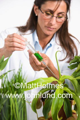 Female scientist doing genetic or some type of research on plants. She is using a syringe to inject a green substance into a hybrid plant or something.
