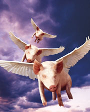 Picture of flying pigs