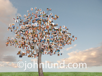 A tree is covered in photos in this stock picture of a family tree of social media, social networking and the new tribes of the Internet..