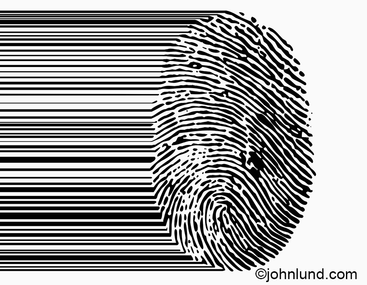 A bar code blends in to a finger print in this stock photo about security and identity issues.