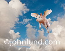 A flying pig soars through the clouds on white wings and sticks his tongue out mocking those who doubted his unique ability to rise above the expected!
