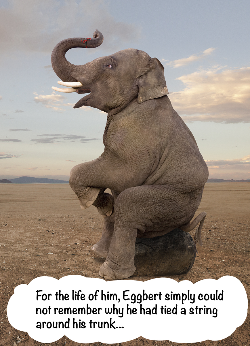 Ever forget an important occasion and wanted to apologize? This forgetful elephant image makes a great image for such a greeting card!