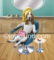 A funny image of a Basset Hound sitting in a chair with a head wrap and painted nails in a beauty parlor, salon, or spa.