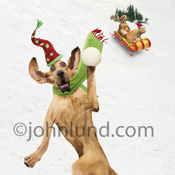 A Bloodhound hurls a snowball while a dog and cat take a sled ride on the snowy slopes behind him in a Holiday photo.