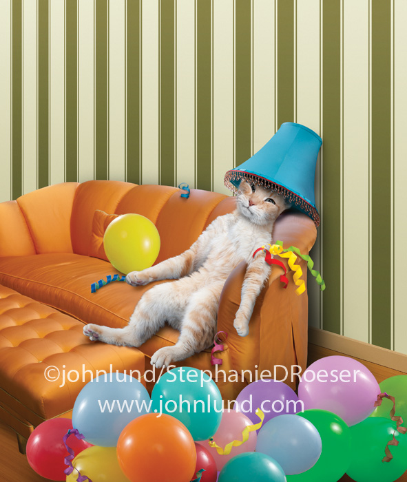 A tired looking cat wears a lampshade on his head and lays on a couch surrounded by balloons the morning after the party.