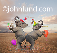 Funny elephants party up big time with confetti, balloons, party hats and noise makers as they dance in celebration in a funny elephant photo.