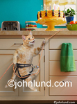 Funny animal picture and stock photo of a cat using a cimbing rope to scale the kitchen counter for the birthday cake.