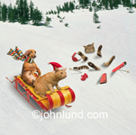 Funny picture of a dog and a cat (wearing a Santa Hat) sleding with a nearby skiing cat crashed in the snow. Funny Greeting Card.