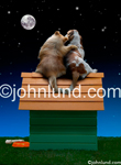 Two dogs gazing at the moon together as they sit romantically on the roof of a doghouse with one paw around the other. Dogs in love picture.
