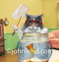 A funny picture of a cat wearing a scuba mask and holding a fish net as he stands behind a nervous looking goldfish in a fish bowl in a funny fishing stock photo.