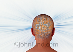 Artificial intelligence leading the way into the future is the concept behind this stock photo of a person's head from behind, semi-transparent and filled with computer circuitry, and against a background of zooming blue streaks.