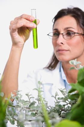 Picture of a woman scientist holding up a test tube full of a green liquid and examining it.  She is wearing eyeglasses and looks nerdy and scientific. She is doing genetic research.