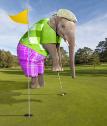 An elephant, dressed in traditional golfing attire, attempts a putt as he plays a round of golf.