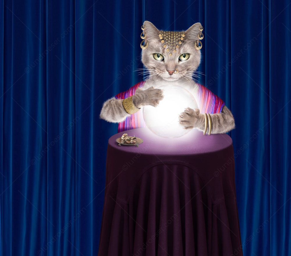 This fortune telling Gypsy, with her glowing crystal ball, is also a cat in an image created for stock photography and greeting card uses.