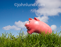 A happy piggy bank leaps through a field of grass in a metaphor for growing savings and aggressive investing.
