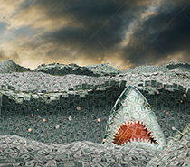 A shark created from money rises up in a sea of U. S. Dollars or currency in  a stock photo about loan sharks, predatory lending and investment dangers.
