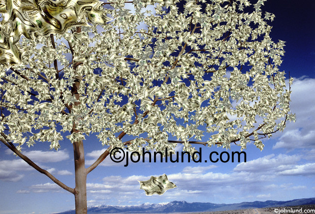 A beautiful artistic money tree set against an impressive deep blue sky with a few clouds.  The tree leaves have been replaced with 100 dollar bills. Money Tree Pics.