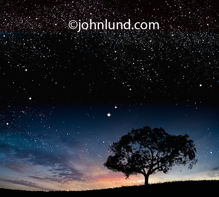 An oak tree is silhouetted against a sunset and starry night sky in this stock photo about wonder and discovery.