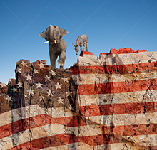 Partisan politics is the concept of this stock photo showing an elephant and a donkey standing at the edge of a cliff multiple exposed with the American Flag.