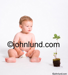 Stock photo of a young diaper wearing baby looking at a potted plant in an image about growth and development. Picture of a baby. Baby pics.