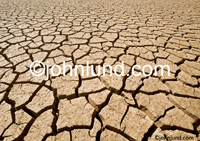 Stock photo of a vast expanse of dry cracked earth showing Global Warming, Ecological Issues and Environmental challenges.