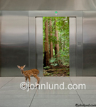 A spotted fawn stands in front of open elevator doors that reveal a beautiful forest in this symbolic stock photo about corporate ecological responsibility. Elevator pictures.