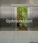 Elevator doors open to reveal a redwood forest symbolizing serenity, nature and a change of pace form the hectic business world.