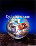 Picture of a crystal ball that tells the financial future. Inside the crystal ball are various currencies of the world.