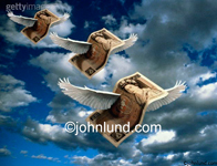 Stock picture of flying currency (British pounds). These British bank notes are flying on white feathered wings through a blue sky filled with dark foreboding clouds. Flying pounds pic.