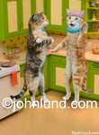 Gossip...two funny cats gossip while standing in a kitchen and wearing jewelry. Created For Greeting Card use.