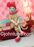 Stock photo of a sexy cat sitting on the edge of a bed; This kitty is wearing a red hat, a red pop bead necklace, and red slippers.