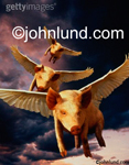 Stock photo of three pigs with outstretched wings flying through a stormy sky illustrating the impossible and the improbable.