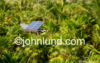 Stock photo of solar panels in a tropical jungle in an image about alternative energy sources and solar power.